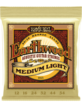 ERNIE BALL 2003 Earthwood...