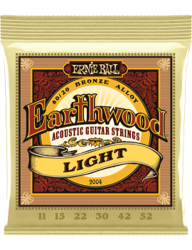 ERNIE BALL 2004 Earthwood...